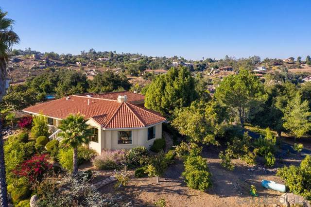 28364 Tricia Place, Escondido, CA 92026 (#190062057) :: Zember Realty Group