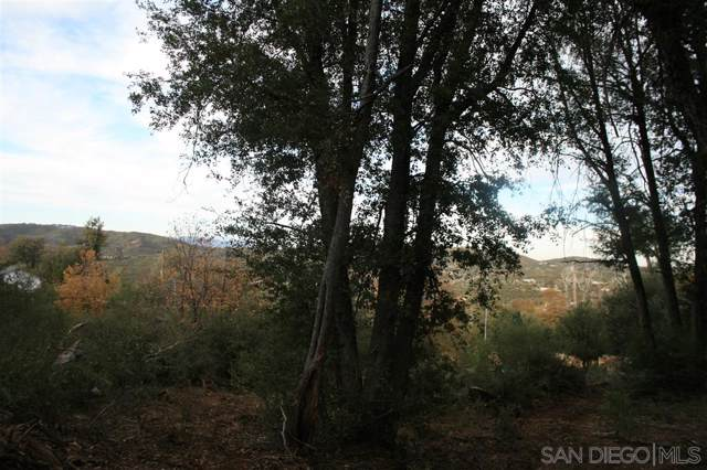 1.14 ac Birdsell Lane -, Julian, CA 92036 (#190062262) :: Ascent Real Estate, Inc.