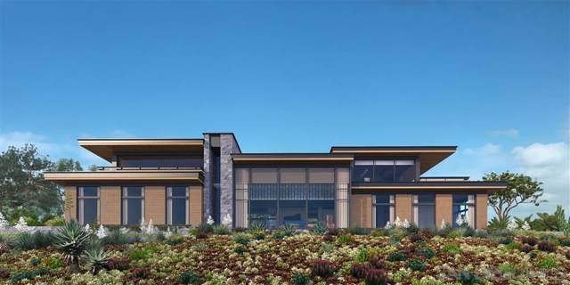 7362 Brodiaea Way 27,878 Sq Ft, La Jolla, CA 92037 (#190062471) :: Neuman & Neuman Real Estate Inc.