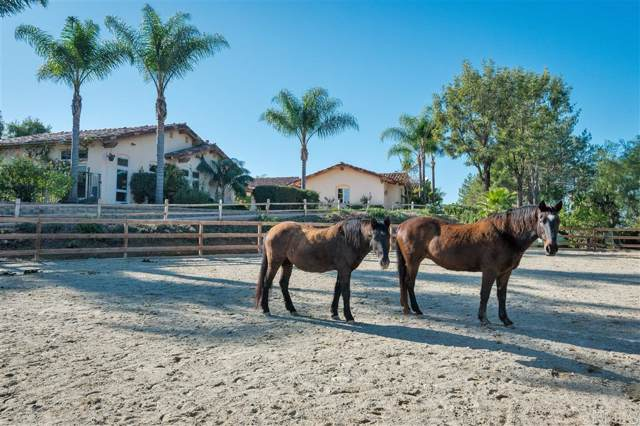 7150 Via Del Charro, Rancho Santa Fe, CA 92067 (#190063519) :: Neuman & Neuman Real Estate Inc.