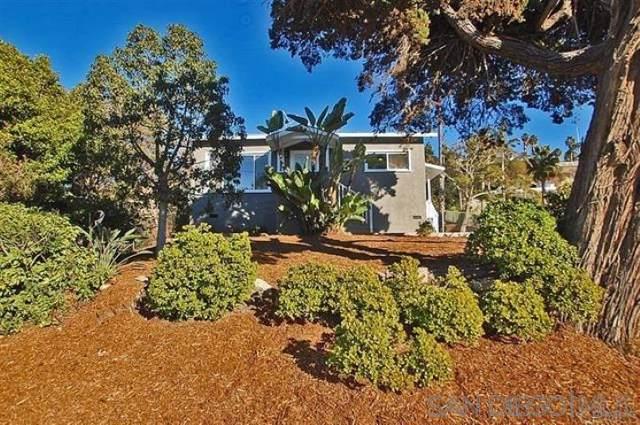 880 Stevens Avenue, Solana Beach, CA 92075 (#190063915) :: Be True Real Estate