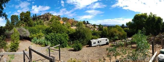 10320 Challenge Blvd A, La Mesa, CA 91941 (#190064413) :: Whissel Realty