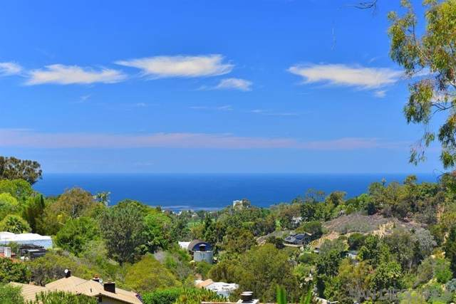 1747 El Paso Real, La Jolla, CA 92037 (#190064596) :: Keller Williams - Triolo Realty Group