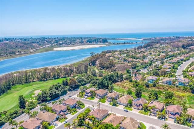 7329 Black Swan Pl, Carlsbad, CA 92011 (#190065087) :: Allison James Estates and Homes