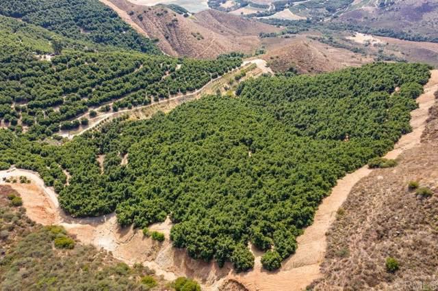 203 Acres Pauma Ridge #0, Pala, CA 92059 (#190065197) :: Keller Williams - Triolo Realty Group