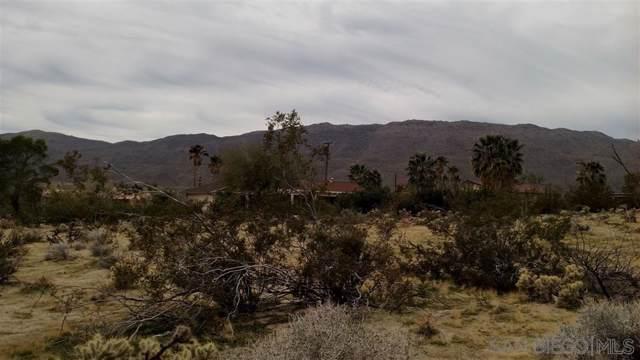 Lot #30 San Carlos Dr #30, Borrego Springs, CA 92004 (#190065880) :: Keller Williams - Triolo Realty Group