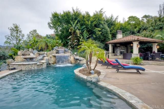 7929 Camino De La Dora, Rancho Santa Fe, CA 92067 (#200000158) :: Allison James Estates and Homes