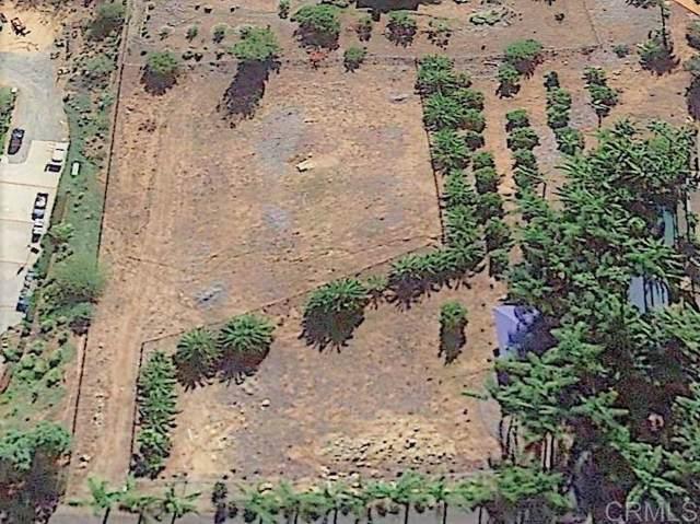 875 Quail Hill Rd. #53, Fallbrook, CA 92028 (#200003590) :: Allison James Estates and Homes