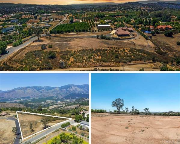 30564 Tyler Heights #1, Valley Center, CA 92082 (#200004295) :: Allison James Estates and Homes