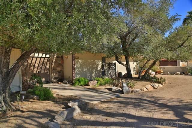 426 De Anza Spur, Borrego Springs, CA 92004 (#200006387) :: Neuman & Neuman Real Estate Inc.