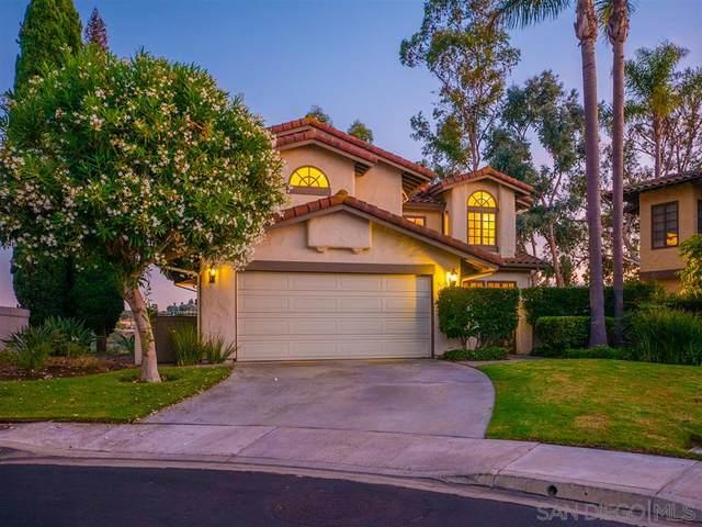 5205 Caminito Providencia, Rancho Santa Fe, CA 92067 (#200006538) :: The Miller Group