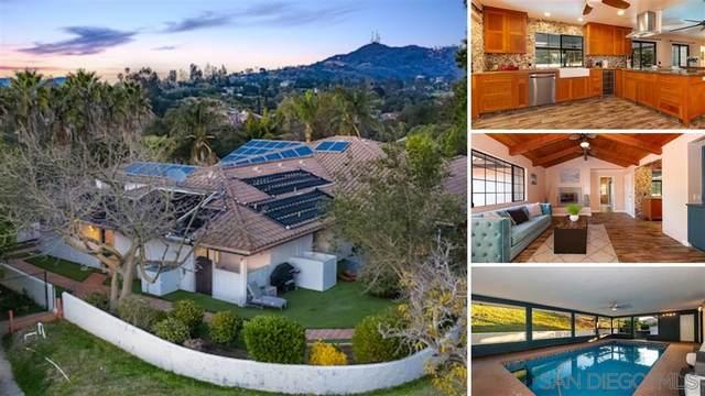 210 S Ridge Dr, Fallbrook, CA 92028 (#200007654) :: Neuman & Neuman Real Estate Inc.