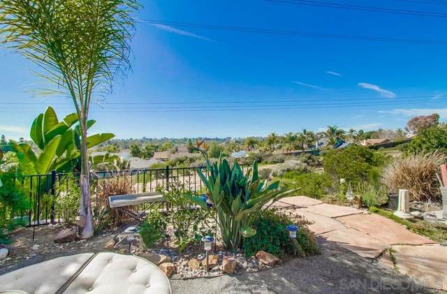 224 W Village Run, Encinitas, CA 92024 (#200008134) :: Compass