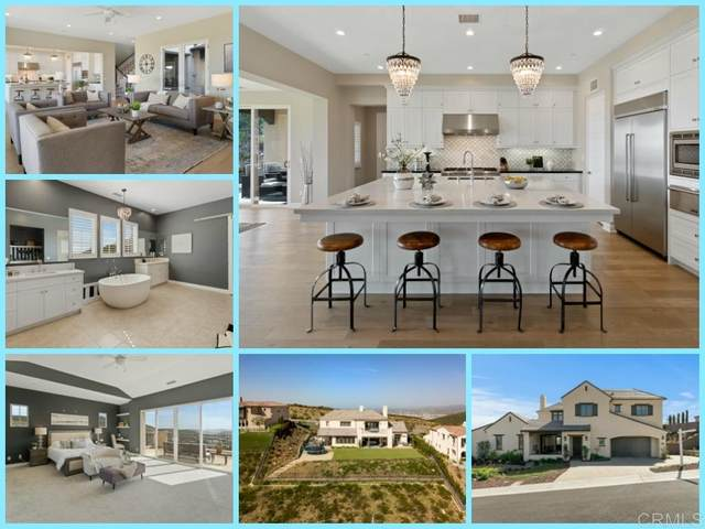 893 Pearl Drive, San Marcos, CA 92078 (#200008245) :: Allison James Estates and Homes