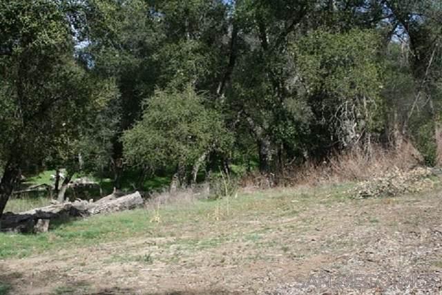 1210 Riverwood Rd #81, Santa Ysabel, CA 92070 (#200008818) :: Keller Williams - Triolo Realty Group