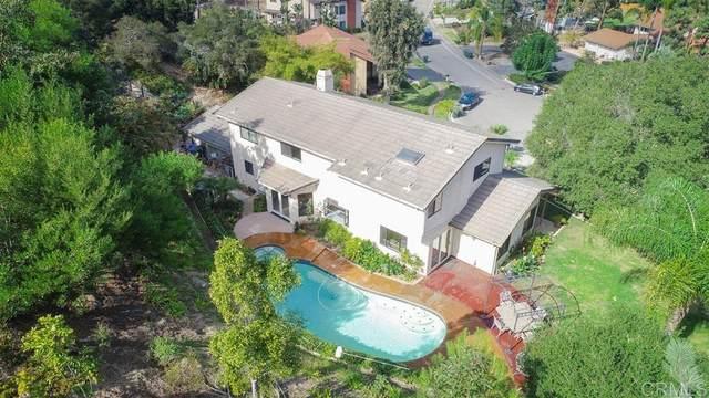 808 Morning Sun Dr, Encinitas, CA 92024 (#200009078) :: Cane Real Estate