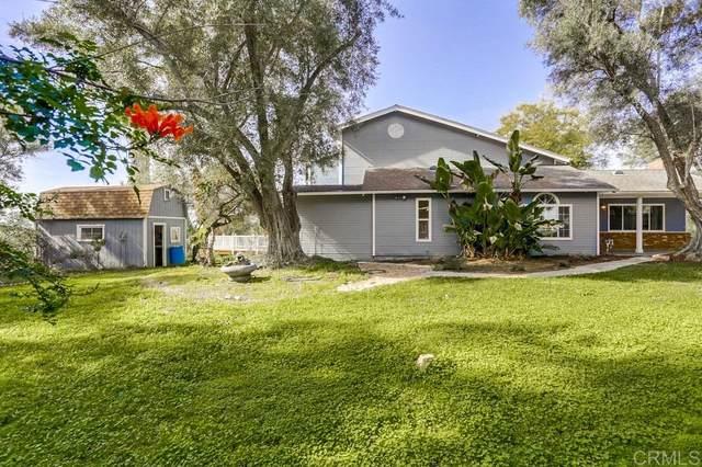 1267 Palomino Road, Fallbrook, CA 92028 (#200009185) :: Keller Williams - Triolo Realty Group