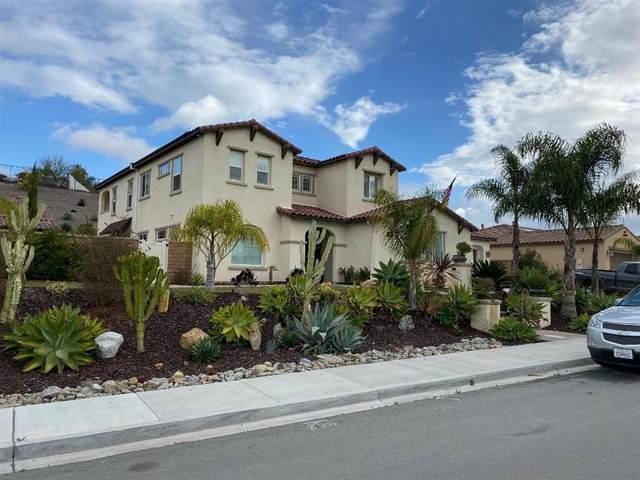 3191 Via Ponte Tresa, Chula Vista, CA 91914 (#200009210) :: Cane Real Estate