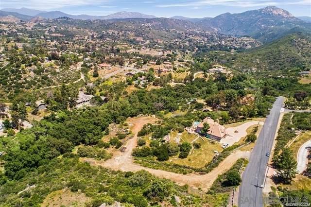 0 Via Viejas Oeste, Alpine, Ca, Usa #40, Alpine, CA 91901 (#200010752) :: Keller Williams - Triolo Realty Group