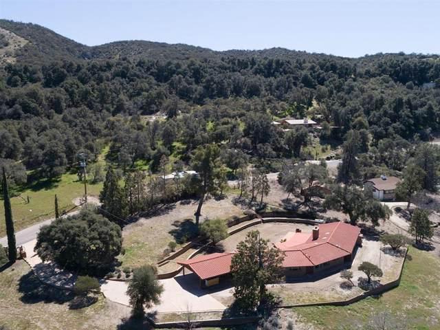 32946 Camino Ortega, Warner Springs, CA 92086 (#200011219) :: The Stein Group