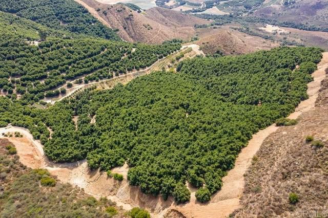 100 acres Pauma Ridge Rd #0, Pala, CA 92059 (#200011808) :: Keller Williams - Triolo Realty Group