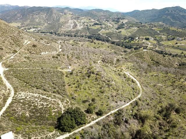 Via Del Rio #0, Fallbrook, CA 92028 (#200012029) :: Keller Williams - Triolo Realty Group