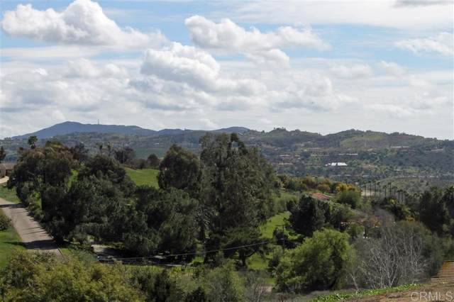 Ramona Drive #23, Fallbrook, CA 92028 (#200013207) :: Keller Williams - Triolo Realty Group