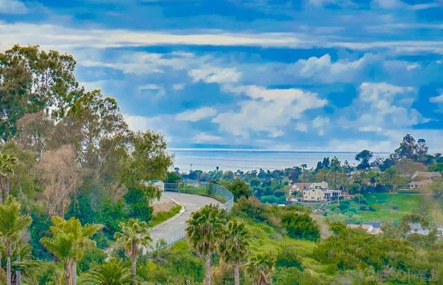 3929 Marvin Street, Oceanside, CA 92056 (#200014846) :: The Marelly Group | Compass