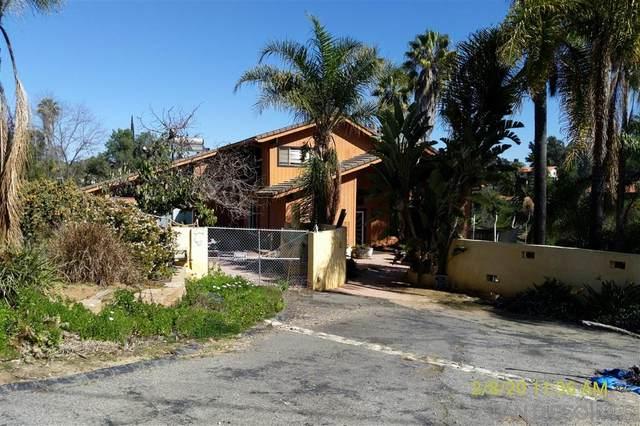 3952 Palomar Dr, Fallbrook, CA 92028 (#200014850) :: Allison James Estates and Homes