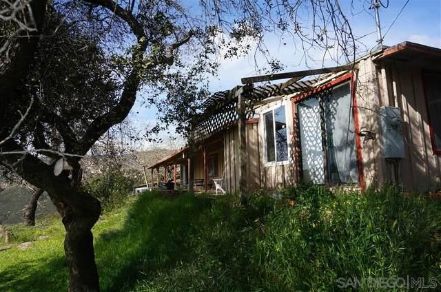 6472 Testigo Trail, Alpine, CA 91901 (#200015063) :: Keller Williams - Triolo Realty Group