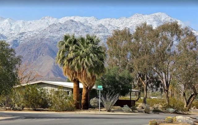 3176 Slice Ct, Borrego Springs, CA 92004 (#200015267) :: Keller Williams - Triolo Realty Group