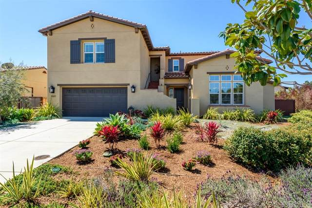 2921 Valley Street, Carlsbad, CA 92008 (#200015679) :: Keller Williams - Triolo Realty Group