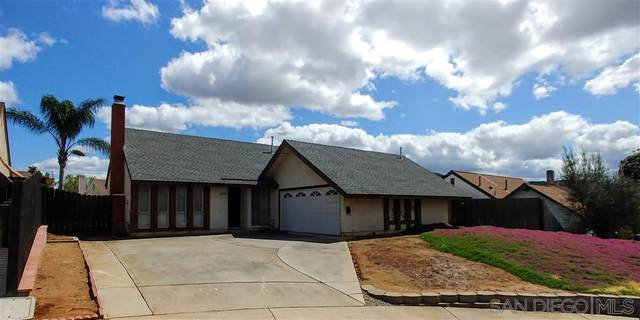 10910 Anja Way, Lakeside, CA 92040 (#200015808) :: Neuman & Neuman Real Estate Inc.