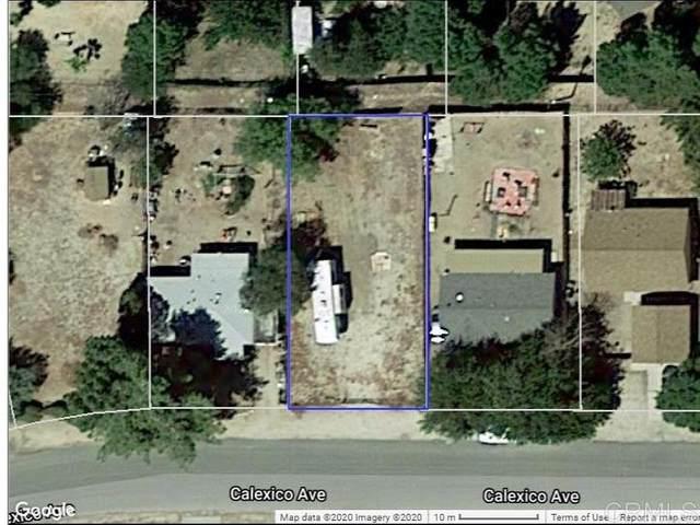 000 Calexico Ave. #40, Jacumba, CA 91934 (#200016314) :: Neuman & Neuman Real Estate Inc.