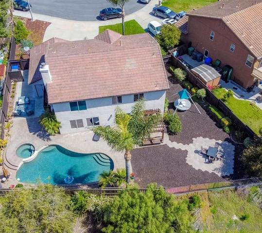 3347 New Branch Court, Oceanside, CA 92058 (#200016681) :: Allison James Estates and Homes