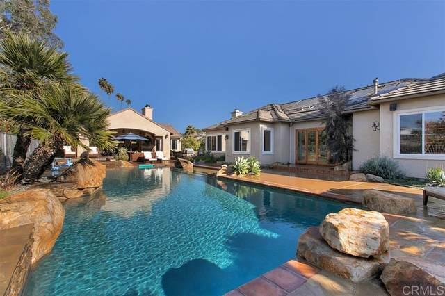 1007 Park Hill Place, Vista, CA 92081 (#200016982) :: Keller Williams - Triolo Realty Group