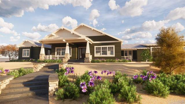 3015 Wildflower Drive, Encinitas, CA 92024 (#200019116) :: Neuman & Neuman Real Estate Inc.