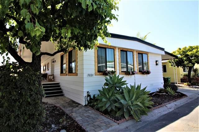 7021 San Bartolo St #40, Carlsbad, CA 92011 (#200022183) :: Keller Williams - Triolo Realty Group