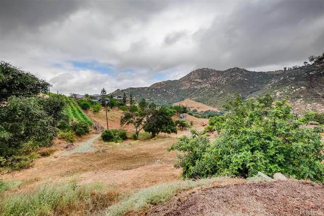 17075 Lyons Valley Rd, Jamul, CA 91935 (#200024337) :: Neuman & Neuman Real Estate Inc.