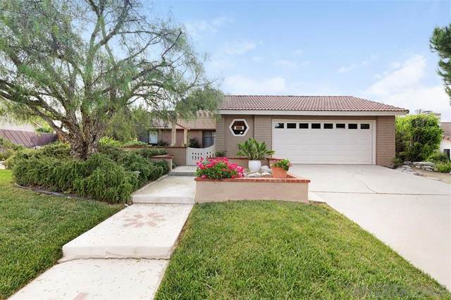 1336 Broken Hitch Rd, Oceanside, CA 92056 (#200024770) :: The Marelly Group | Compass