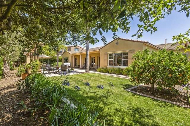1002 Scarlet Way, Encinitas, CA 92024 (#200025348) :: Solis Team Real Estate
