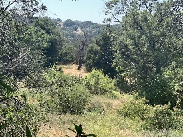 6 acres Hwy 78 #2481900900, Julian, CA 92036 (#200025873) :: Keller Williams - Triolo Realty Group