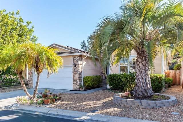 1124 Cottontail Rd, Vista, CA 92081 (#200026002) :: Solis Team Real Estate