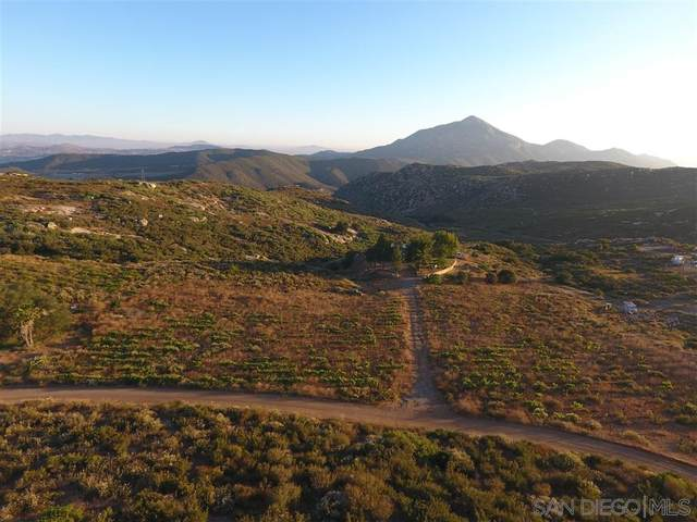 24080 Hwy 94, Potrero, CA 91963 (#200028937) :: Team Forss Realty Group