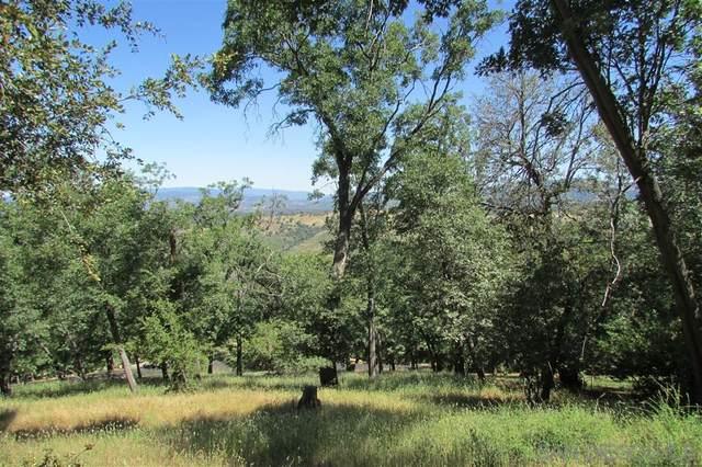3140 Oak Grove Drive #0, Julian, CA 92036 (#200029558) :: Neuman & Neuman Real Estate Inc.