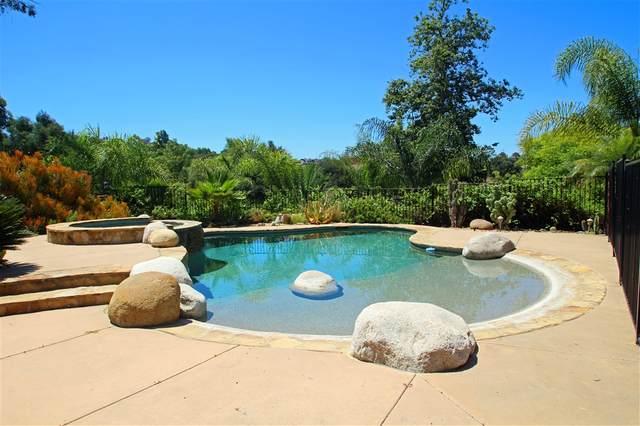 29938 Wilkes Road, Valley Center, CA 92082 (#200030023) :: Neuman & Neuman Real Estate Inc.