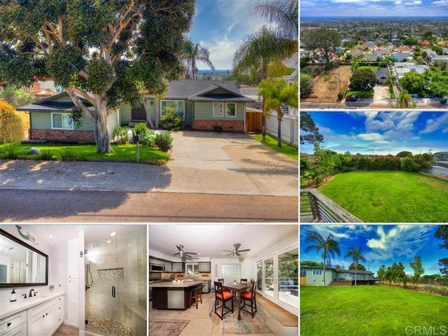 3785 Highland Dr, Carlsbad, CA 92008 (#200032989) :: The Stein Group