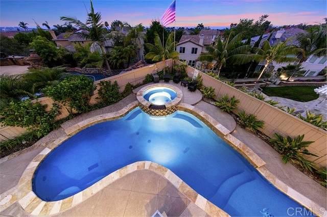 1002 Canvasback Court, Carlsbad, CA 92011 (#200036225) :: Neuman & Neuman Real Estate Inc.