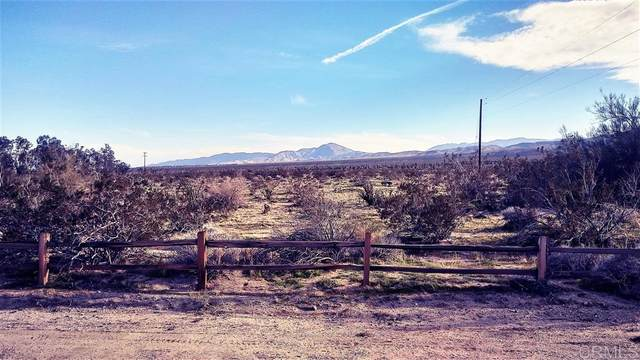 San Pablo Rd 234, 235, Borrego Springs, CA 92004 (#200036773) :: Whissel Realty