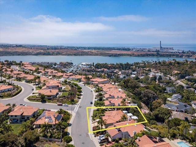 4365 Sunnyhill Dr, Carlsbad, CA 92008 (#200036859) :: Whissel Realty